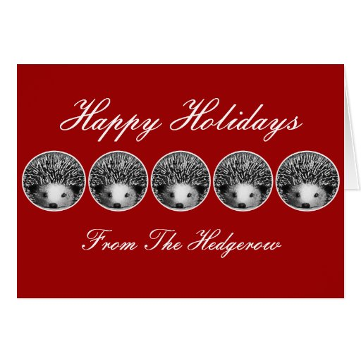 Hedgerow Hedgehogs Holiday Card