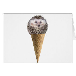Hedgie Scoop Card