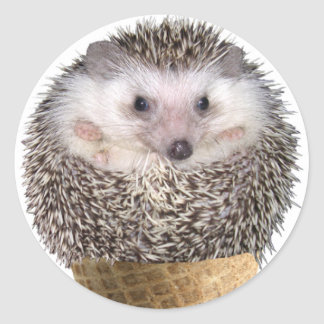 Hedgie Scoop Classic Round Sticker