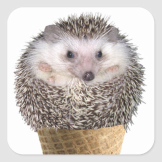 Hedgie Scoop Square Stickers