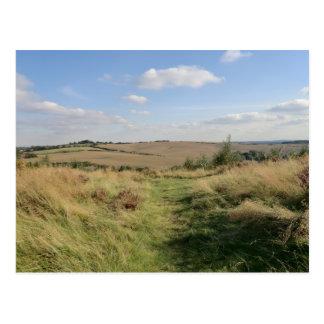 Hednesford Hills, Staffordshire Postcard