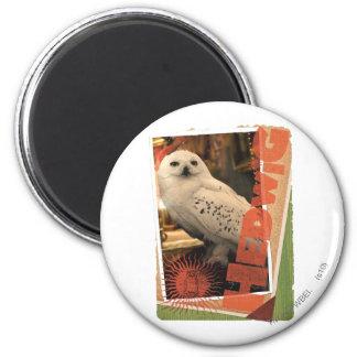 Hedwig 1 magnets