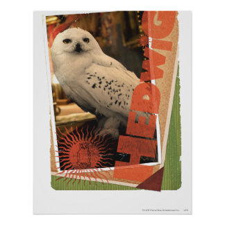 Hedwig 1 print