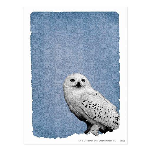 Hedwig 2 tarjetas postales