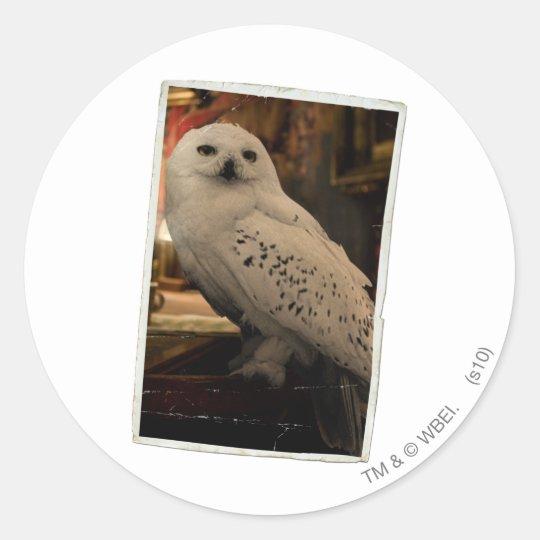 Hedwig 3 classic round sticker