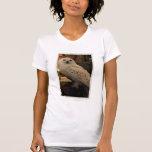 Hedwig 3 t-shirts
