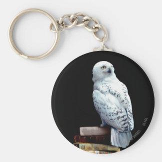 Hedwig en los libros llavero redondo tipo pin
