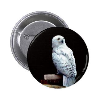 Hedwig en los libros pin redondo de 2 pulgadas