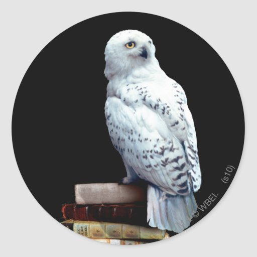 Hedwig on books classic round sticker