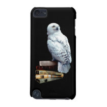 Hedwig on books iPod touch 5G case