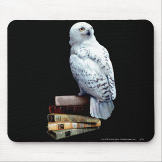 Hedwig on books mouse pad