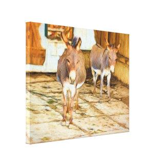 Hee Haw Donkeys Canvas Print