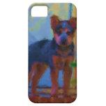 Heeler- azul ACD, cubierta australiana del ganado iPhone 5 Case-Mate Cárcasas