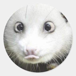 Heidi el oposum bizco etiquetas redondas