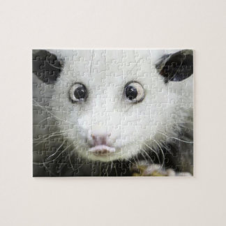 Heidi el oposum bizco puzzle con fotos