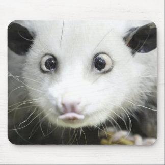 Heidi el oposum bizco alfombrillas de ratones