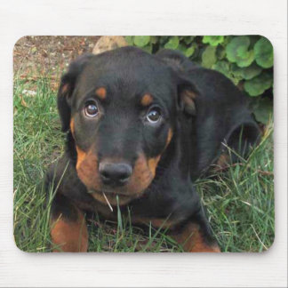 Heidi Guilty Rottweiler Mouse Pad