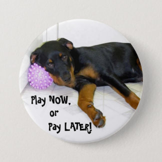 Heidi Play Now, or Pay Later Button