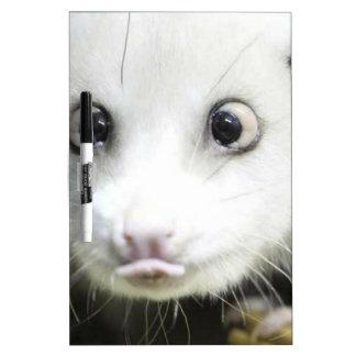 Heidi The Cross Eyed Opossum Dry-Erase Whiteboards