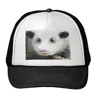 Heidi The Cross Eyed Opossum Mesh Hats
