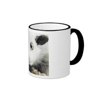 Heidi The Cross Eyed Opossum Coffee Mugs