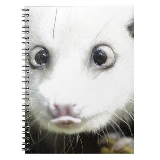 Heidi The Cross Eyed Opossum Notebook