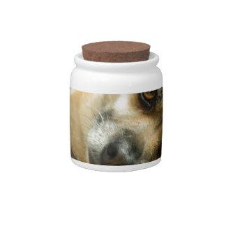 Heidi the Pinup Dog Candy Jar