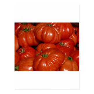 Heirloom Garden Tomato Postcard
