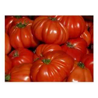 Heirloom Garden Tomato Postcard