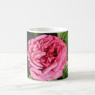 Heirloom Hybrid Tea Rose 027 Mugs