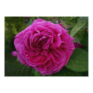 Heirloom Rose Card