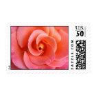 Heirloom Rose Postage Stamp