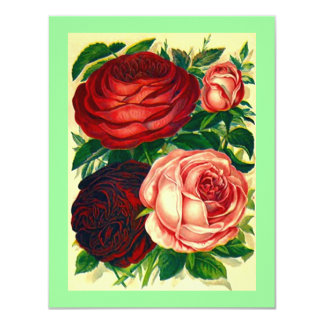 HEIRLOOM ROSES ~ PRETTY REHEARSAL DINNER INVITES! CARD