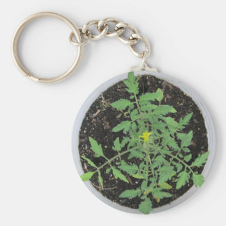Heirloom Tomato Plant Peace Sign Key Chains