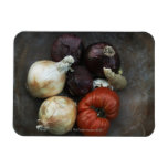Heirloom tomato, yellow onion, red onion, ginger vinyl magnet