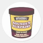 Helado de la sorpresa de Soundex Etiquetas Redondas