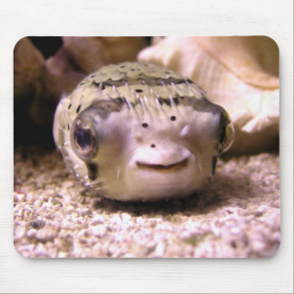 Helaine s Blowfish Pufferfish Mousepads