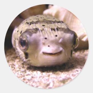Helaine s Blowfish Pufferfish Sticker