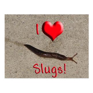 Helaine s Slug Postcard