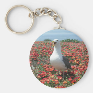 Helaine's Anacapa Island Seagull Basic Round Button Keychain