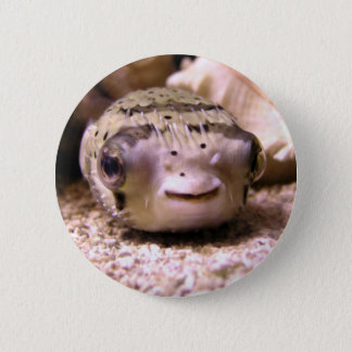 Helaine's Blowfish Pufferfish Button
