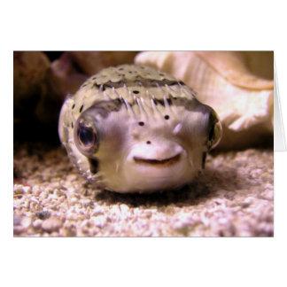 Helaine's Blowfish Pufferfish Card