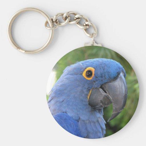 Helaine's Blue Parrot Key Chain