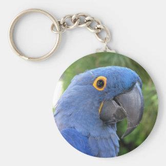 Helaine's Blue Parrot Keychains