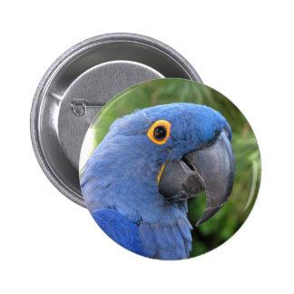 Helaine's Blue Parrot Pinback Button