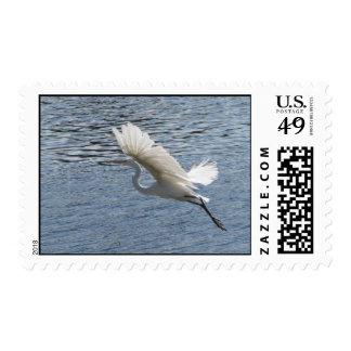 Helaine's Flying Egret Postage Stamps