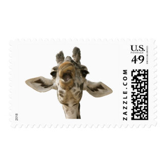 Helaine's Goofy Giraffe Postage Stamps