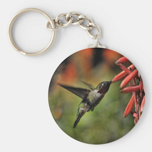 Helaine's Hummingbird 2 Basic Round Button Keychain