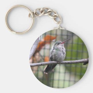 Helaine's Hummingbird Keychain