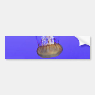 Helaine's Jelly Fish 4 Bumper Sticker